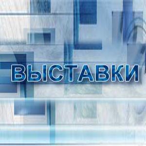 Выставки Киргиз-Мияков